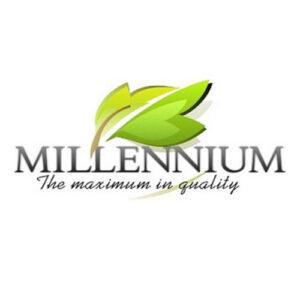 Millennium (Китай-Германия)